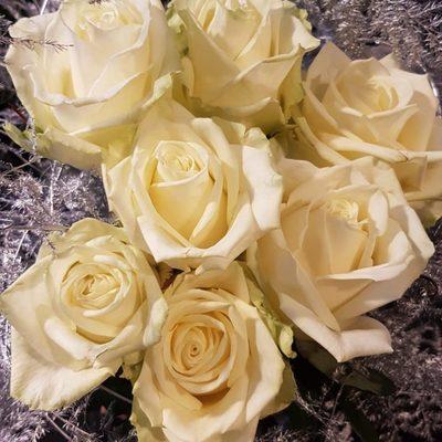 witte-rozen-768x1024.jpg