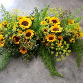 Zonnebloemen royaal